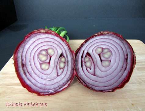 Two halves of a red onion
